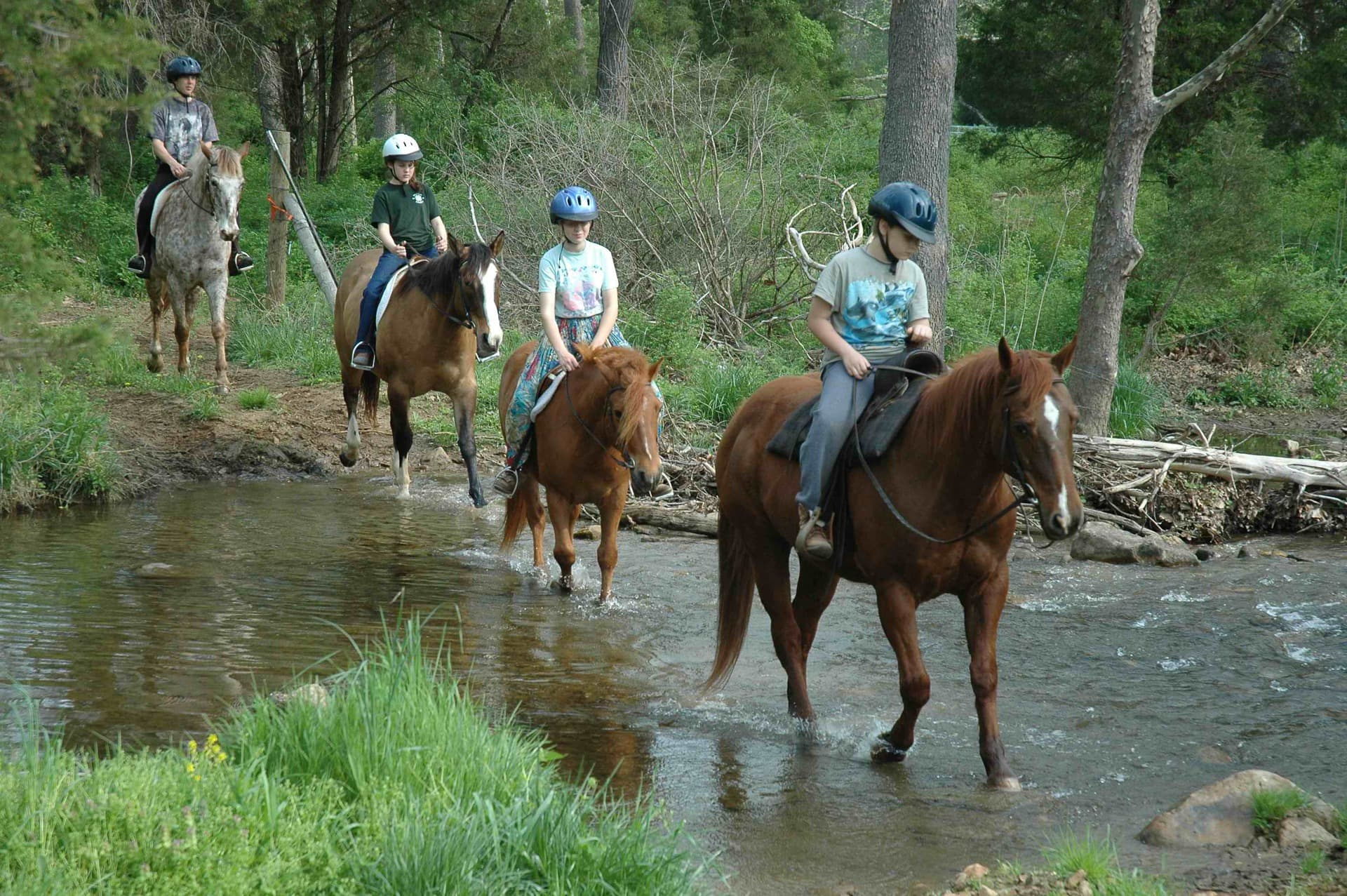 Places to go horseback riding near me best place 2017 for Places to go horseback riding near me